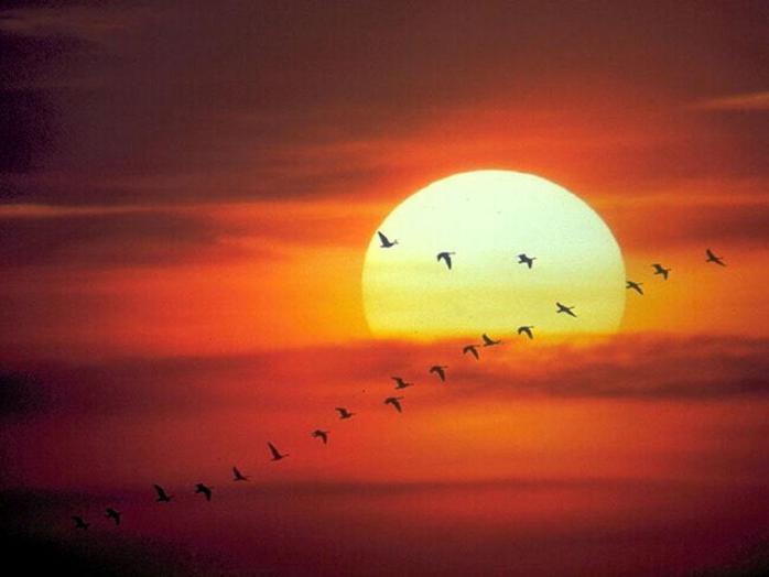 Es hora de volar más cerca del Sol