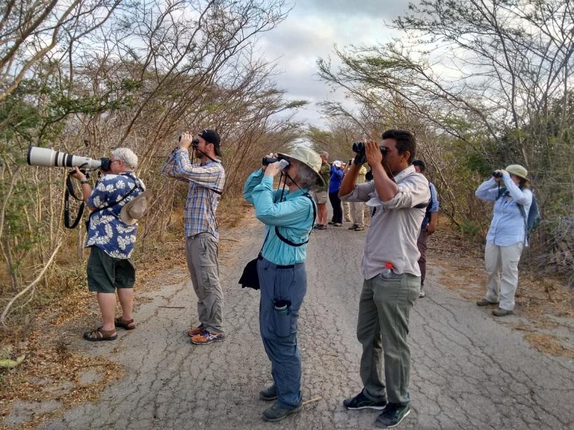 Aviturismo en Santa Marta Colombia