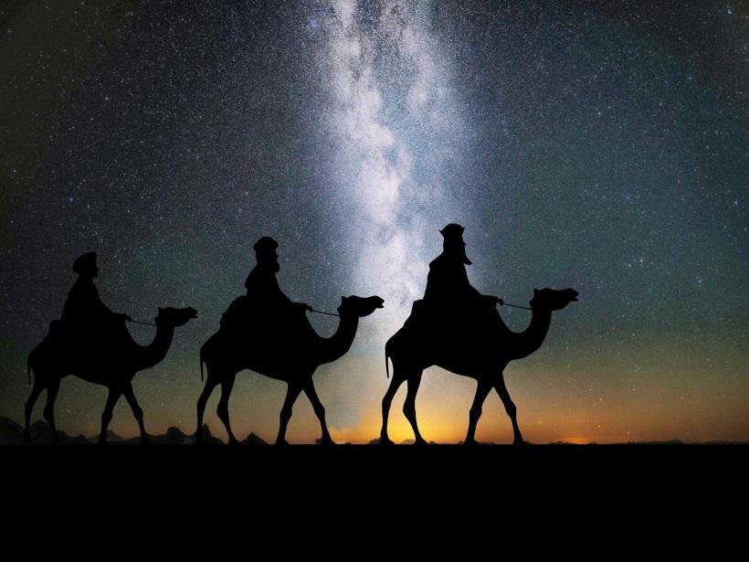 camels-1150075_1920 (1)