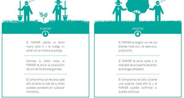 Crowdfarming o la experiencia auténtica de convertirse en agricultor.JPG
